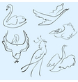 birds design set vector image vector image