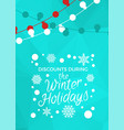 discounts during winter holidays banner in frame vector image