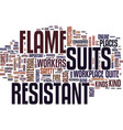 flame resistant suits text background word cloud vector image vector image