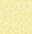 fresh slice of a lemon seamless vector image vector image