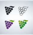 grapes dofferent color icon set vector image