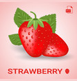 set of two fresh ripe strawberry with leaves vector image vector image