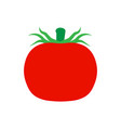tomato vegetarian natural isolated harvest vector image vector image