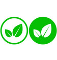 two simple leaf icons vector image vector image