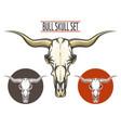 Bull Skull set vector image vector image