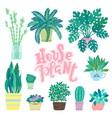 collection decorative houseplants isolated on vector image