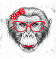 retro hipster animal monkey hand drawing muzzle vector image vector image