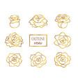 set outline golden roses vector image vector image
