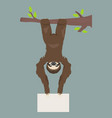 sloth is holding a banner place for your vector image