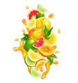 citrus fruits juice drops colorful composition vector image