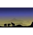 Elephant silhouette in desert vector image