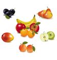 ripe fruit vector image vector image