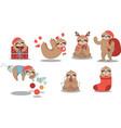 set cute sloth wearing christmas stuffs and vector image vector image