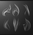 transparent match smoke vector image vector image