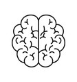 isolated brain design vector image