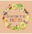 dehydrated fruits with lettering vector image