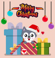dog with christmas gifts vector image