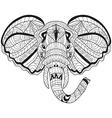 hand drawn decorative elephant vector image