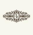 stylish graceful monogram elegant line art logo vector image