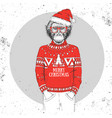animal monkey dressed in new year hat and pullover vector image vector image