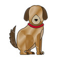 cartoon sitting dog with collar pet family vector image vector image