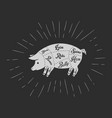 pork meat cuts blackboard vector image