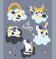 poster with cute cats and clouds graphics vector image