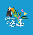 welcome to brazil design vector image