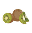 cartoon kiwi fresh vitamin fruit juicy sliced vector image