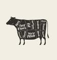 cuts meat cow butcher shop beef vector image vector image