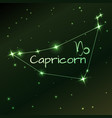 earth symbol of capricorn zodiac sign horoscope vector image