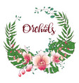 floral design frame orchid eucalyptus greenery vector image vector image