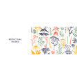 hand drawn medicinal herbs banner design in color vector image