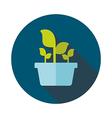 Plant in pot flat icon garden flowerpot vector image vector image