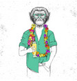 retro hipster animal monkey with tropic cocktail vector image