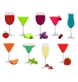 set of different party drinks vector image vector image