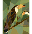 Stained glass of a toucan bird vector image