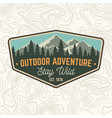 stay wild outdoor adventure patch vector image vector image