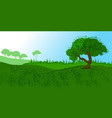 summer meadow tree on the hill vector image
