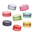 sweet delicious french macarons vector image vector image