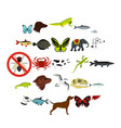 wild animals icons set flat style vector image