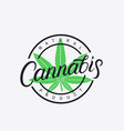 cannabis hand written lettering logo vector image