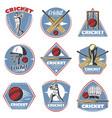 colored vintage cricket logos set vector image vector image