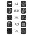 five senses icons feelings of vector image vector image