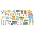 gardening tools spring garden equipment - hoe vector image