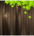 Green summer leaves on wooden background vector image vector image