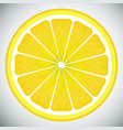 piece of lemon high quality vector image