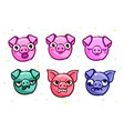 pig is a symbol of 2019 new year head vector image