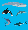 sea animals and fish vector image vector image