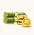 stack paper dollars and golden coins isolated vector image vector image